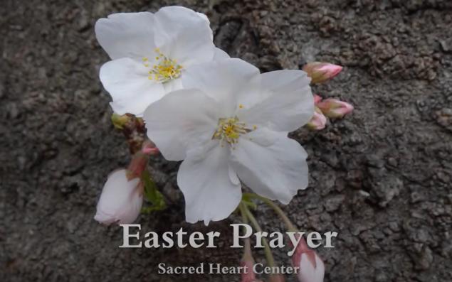Oración de Pascua 2021 Centro Sagrado Corazón Japón