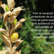 © rscjinternational.org