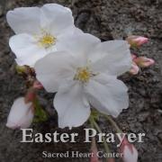 Sacred Heart Center Japan Easter Prayer 2021